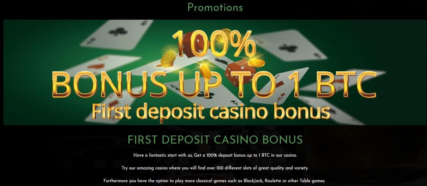 Bonus offer in Coinbet24 casino